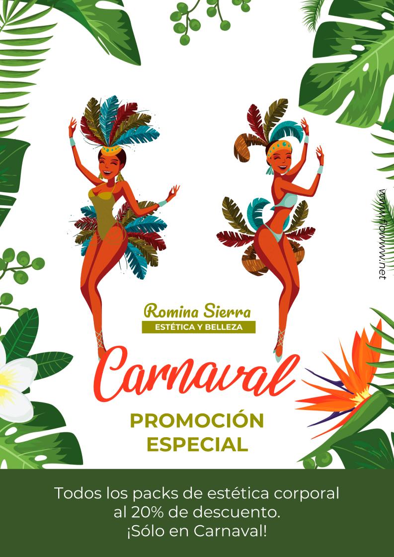 poster carnaval ejemplo_flowww