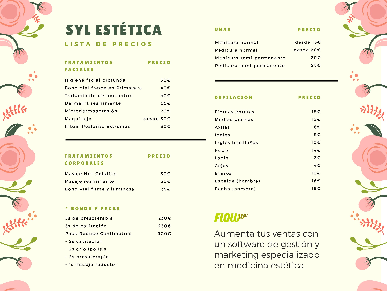 syl-estetica-lista-servicios-ejemplo-flowww.png