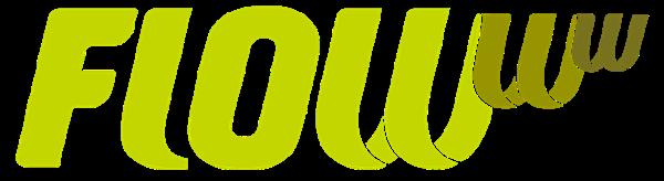 software para estética - programas para estética - flowww logo